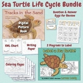 Sea Turtle Life Cycle Bundle