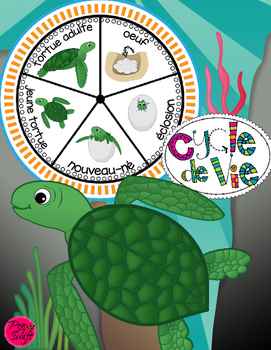 Sea Turtle Life Cycle Craftivity ~ French ~ La tortue de mer