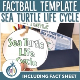 Sea Turtle Life Cycle Factball and Comprehension Sheet
