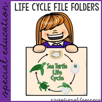 Sea Turtle Life Cycle File Folder Activity