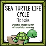 Sea Turtle Life Cycle Flipbook