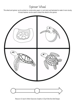 Sea Turtle Life Cycle Graphing Activity by Jason's Online ...