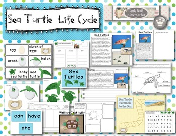 Sea Turtle Life Cycle Literacy, Science & Math Activities & Centers