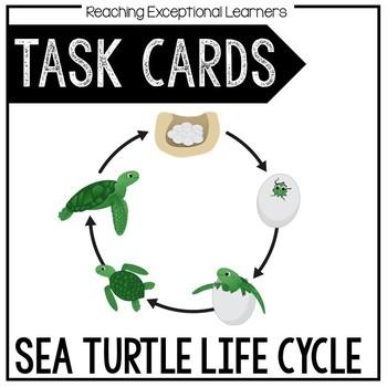 Sea Turtle Life Cycle Task Card Set