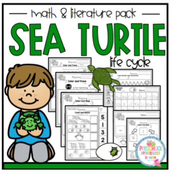 Sea Turtle Life Cycle for Toddlers (2-3 yrs)