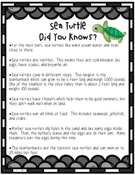 Sea Turtle Math and Literacy Activities
