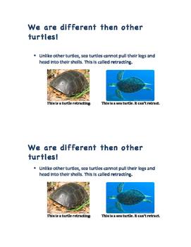 Sea Turtle Reader