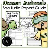 Ocean Animal Research / Report / Sea Turtles
