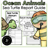 Sea Turtles Report Guide and Craft