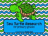 Sea Turtle Research