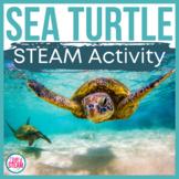 Sea Turtle Life Cycle Bundle: Research, Informative Writin