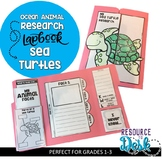 Sea Turtle Research Project - An Ocean Animal Research Lapbook