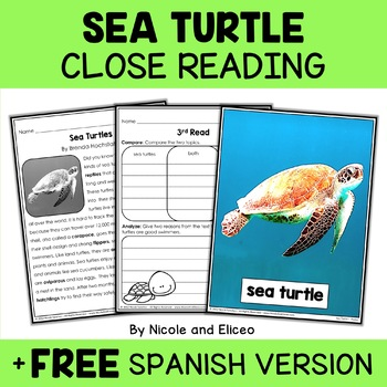 Close Reading Passage - Sea Turtle Activities