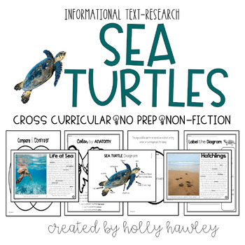 Sea Turtles- A Non-Fiction Magic Tree House Accompany Pack