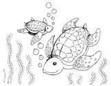 Sea Turtles Coloring Page