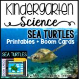 Sea Turtles Kindergarten Science NGSS