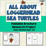Sea Turtles, Loggerheads Brochure Project, Using Informational Text, Vocab