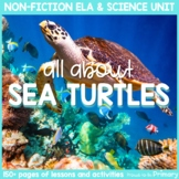 Sea Turtle Reptile Animal Science & Non-Fiction ELA Unit