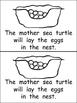 Sea Turtles- Nonfiction Leveled Reader- Level C Kindergarten- Science