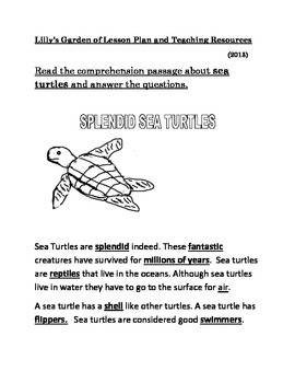 Sea Turtles Reading Comprehension
