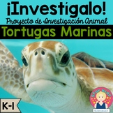Sea Turtles Research Project and Activities IN SPANISH for K-1