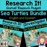 Sea Turtles Research Project and Activities in English and Spanish for K-1