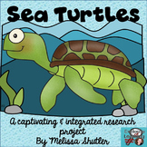 Sea Turtles- an Integrated Research Project