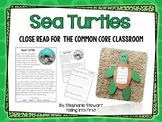 Sea Turtles {Common Core Classroom}