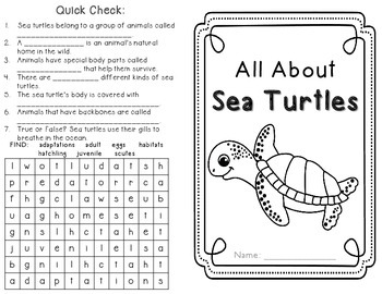 Sea Turtles: life cycle craftivity and non-fiction minibook