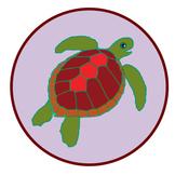 Sea Turtles song, fun facts, music