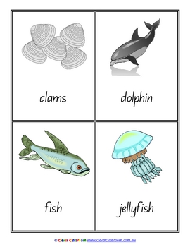Sea Vocabulary/Flash Cards/Word Wall Cards - 8 pages