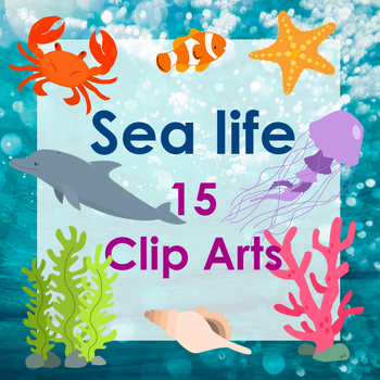 Sea animals Clipart / PNGs