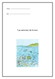 Sea animals in French