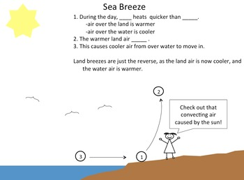 Sea breezes and Land breezes-Why land near water is windy due to seabreezes