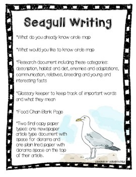 Seagull Animal Research Report