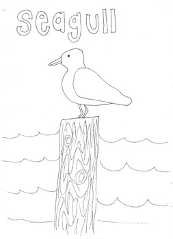 Seagull: Animals and Pets: Colouring Page