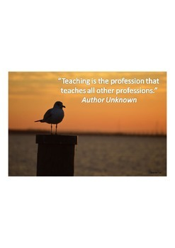 Seagull Sunrise Teacher Appreciation Virtual Product Samples