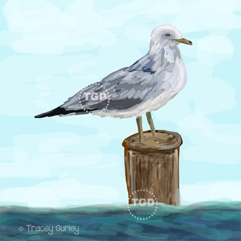 Seagull in ocean - seagull clip art, seagull Printable Tracey Gurley Designs
