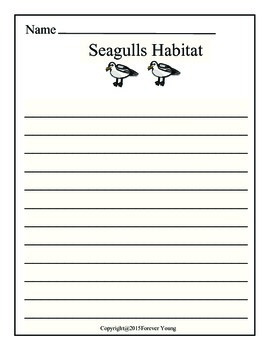 Seagulls Blank Journal Pages