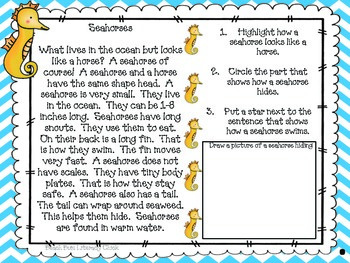 Seahorse - Close Reading and Activity Pack