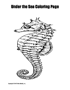 Seahorse Coloring Page Duo By Lesson Machine Teachers Pay Teachers