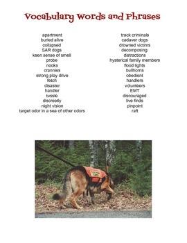 Search and Rescue Dogs Reading Mini Unit
