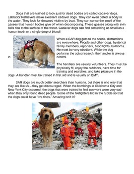 Search and Rescue Dogs Reading Mini Unit