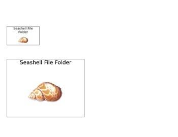 Seashell File Folder