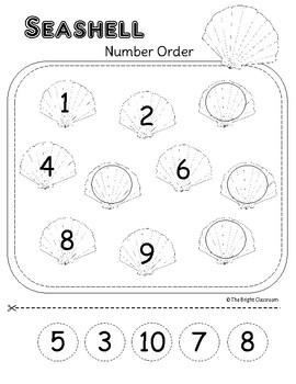 Seashell Math Activities