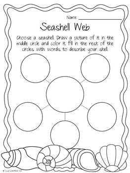 Seashell Sorting Activity ~ Freebie!