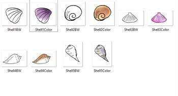 Seashells 10 pc. Clip-Art Set ( 5 BW and 5Color)