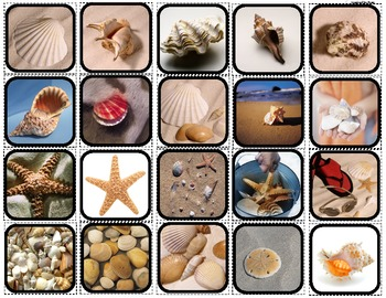 """Seashells"" Picture Matching/Flashcards/Memory Game for Autism"