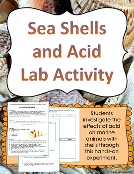 Seashells and Acid Lab