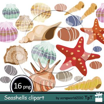 Seashells clipart, shells clipart
